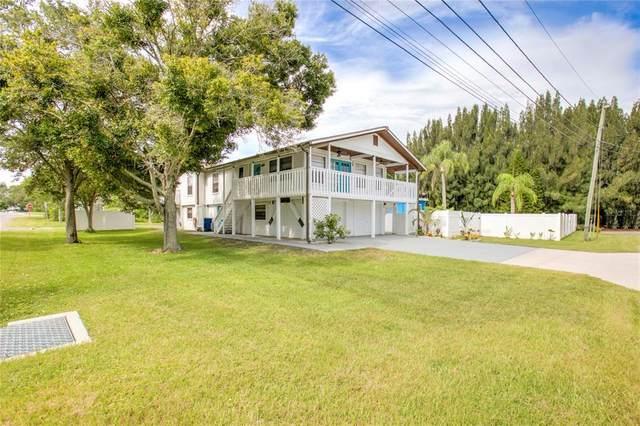 111 Lorraine Street, Crystal Beach, FL 34681 (MLS #W7836269) :: Zarghami Group