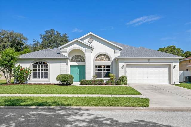 5013 Deer Lodge Road, New Port Richey, FL 34655 (MLS #W7836281) :: Vacasa Real Estate