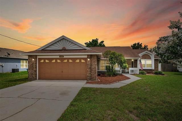 13102 Linden Drive, Spring Hill, FL 34609 (MLS #W7836304) :: Zarghami Group