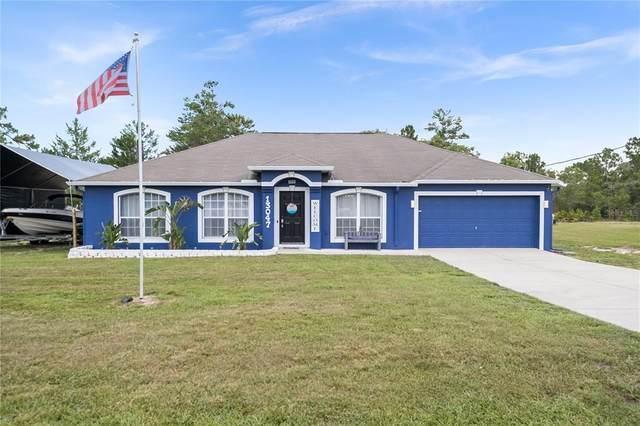 13047 Meinert Avenue, Brooksville, FL 34613 (MLS #W7836327) :: Cartwright Realty