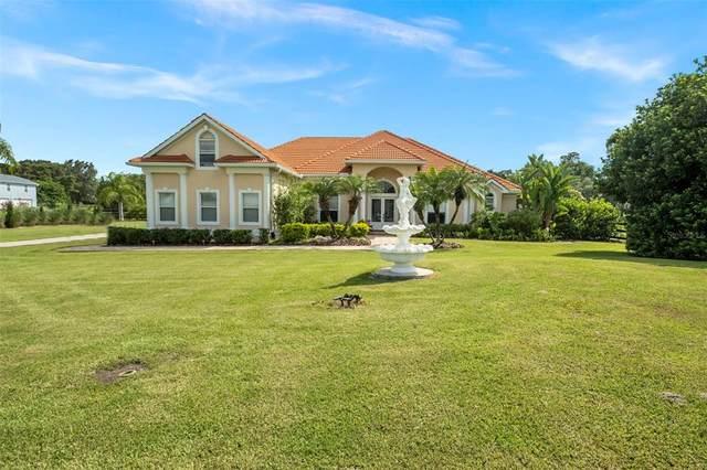 18511 Hancock Bluff Road, Dade City, FL 33523 (MLS #W7836330) :: Cartwright Realty