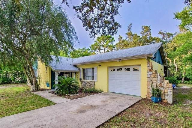 1362 Waterfall Drive, Spring Hill, FL 34608 (MLS #W7836337) :: Cartwright Realty
