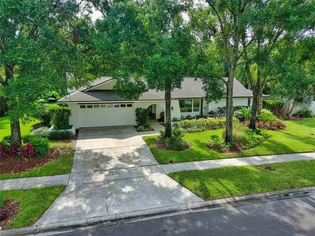 5006 Chattam Lane, Tampa, FL 33624 (MLS #W7836345) :: Team Bohannon