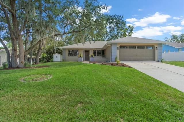 2490 Stanton Avenue, Spring Hill, FL 34609 (MLS #W7836368) :: Everlane Realty
