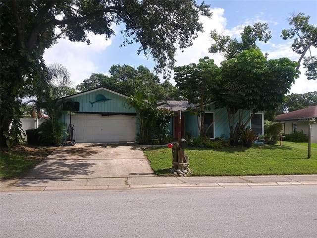3118 Swan Lane, Safety Harbor, FL 34695 (MLS #W7836369) :: The Robertson Real Estate Group