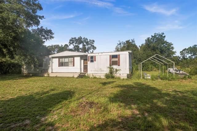 6259 Casson Street, Brooksville, FL 34604 (MLS #W7836382) :: Everlane Realty