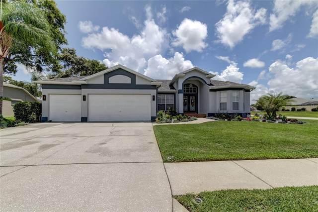 3476 Littleleaf Court, Spring Hill, FL 34609 (MLS #W7836407) :: Premium Properties Real Estate Services