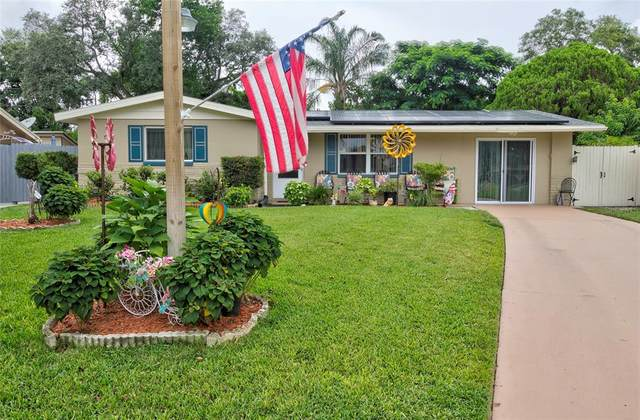 1748 Colmar Drive, Holiday, FL 34690 (MLS #W7836413) :: The Paxton Group