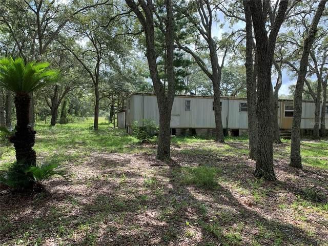 14360 Hurricane Drive, Weeki Wachee, FL 34614 (MLS #W7836419) :: Premium Properties Real Estate Services