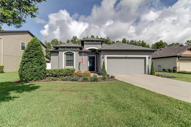 8419 May Port Court, Land O Lakes, FL 34638 (MLS #W7836424) :: Griffin Group