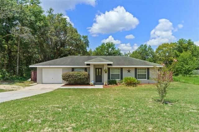 905 Constitution Boulevard, Inverness, FL 34453 (MLS #W7836425) :: Dalton Wade Real Estate Group