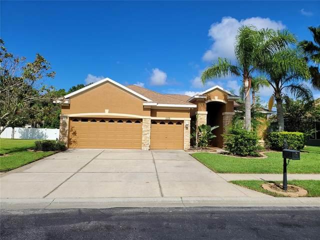 2235 Tarragon Lane, New Port Richey, FL 34655 (MLS #W7836426) :: Cartwright Realty