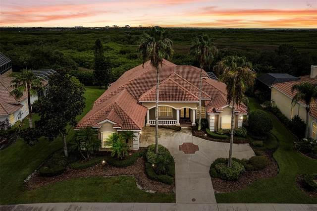 5611 E Longboat Boulevard, Tampa, FL 33615 (#W7836427) :: Caine Luxury Team