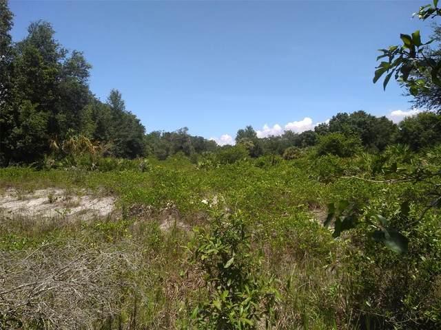 2282 Caliope Drive, Punta Gorda, FL 33983 (MLS #W7836440) :: RE/MAX Elite Realty