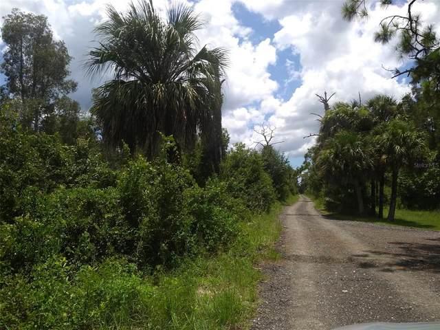 33382 Oil Well Road, Punta Gorda, FL 33955 (MLS #W7836445) :: RE/MAX Elite Realty