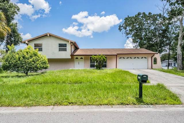 4319 Autumn Leaves Drive, Tampa, FL 33624 (MLS #W7836448) :: The Paxton Group