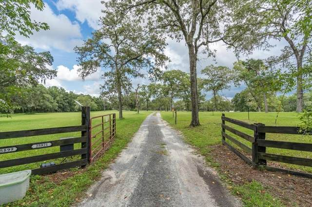9509 Shaver Drive, Brooksville, FL 34601 (MLS #W7836455) :: Florida Real Estate Sellers at Keller Williams Realty