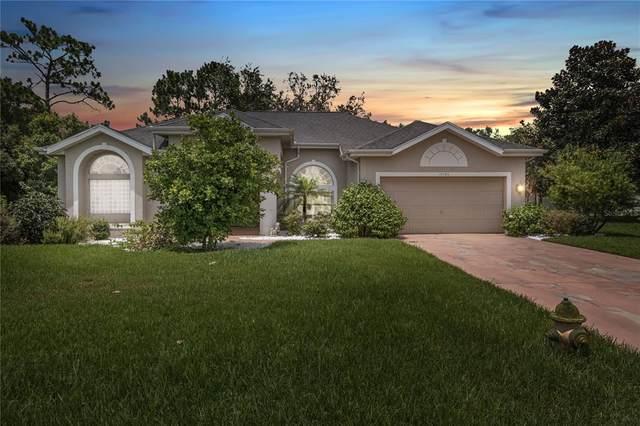 10109 Deer Street, Spring Hill, FL 34608 (MLS #W7836458) :: Visionary Properties Inc
