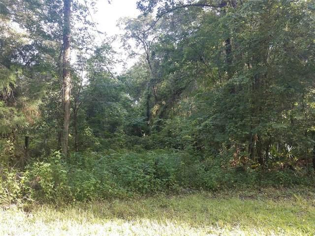 16400 Tumbleweed Trail, Brooksville, FL 34604 (MLS #W7836475) :: Florida Real Estate Sellers at Keller Williams Realty