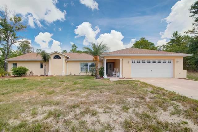 10355 Gannet Avenue, Weeki Wachee, FL 34613 (MLS #W7836477) :: Carmena and Associates Realty Group