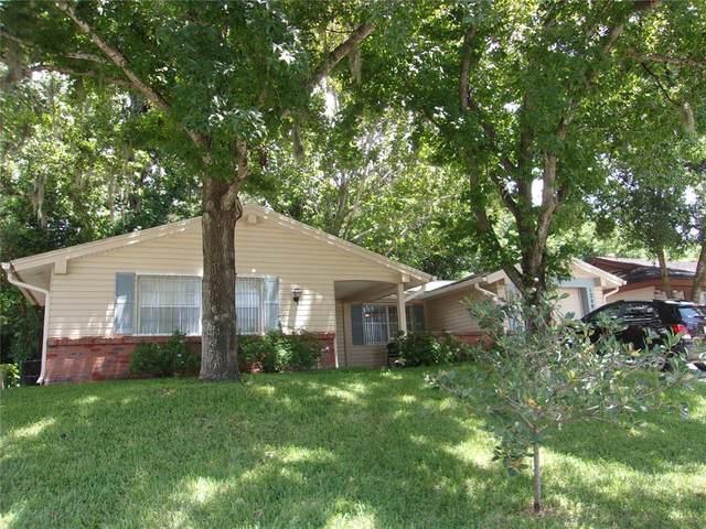 12204 Bear Creek Lane, Hudson, FL 34667 (MLS #W7836483) :: Delgado Home Team at Keller Williams