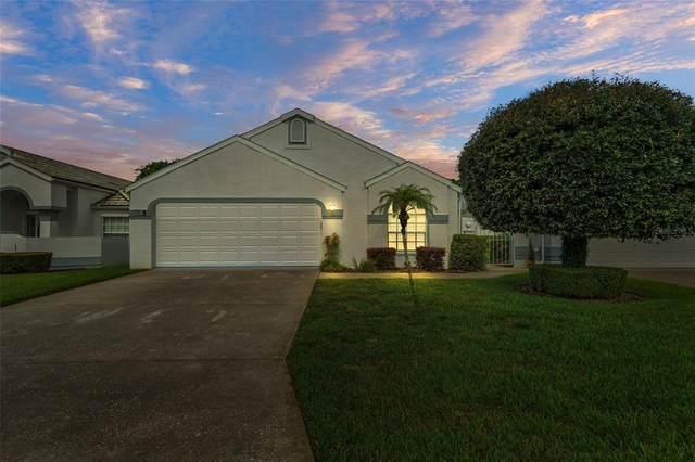 10417 Casa Grande Circle, Spring Hill, FL 34608 (MLS #W7836508) :: Keller Williams Realty Peace River Partners
