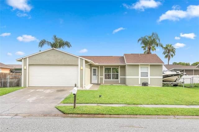 3045 Salton Street, Holiday, FL 34691 (MLS #W7836521) :: Delgado Home Team at Keller Williams