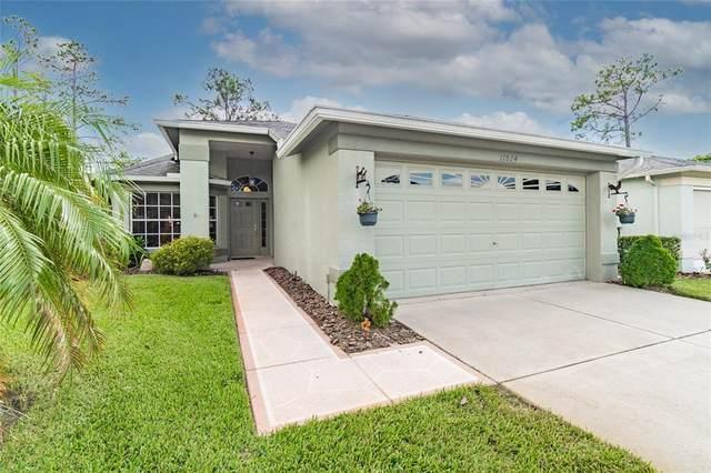 11824 Aranda Court, Hudson, FL 34667 (MLS #W7836527) :: Keller Williams Realty Peace River Partners