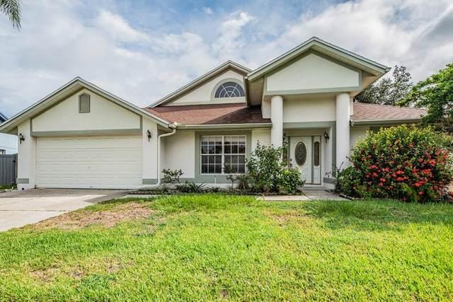 9214 Mill Circle, Tampa, FL 33647 (MLS #W7836595) :: Zarghami Group