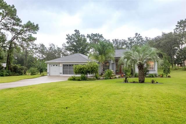 1378 Matthew Avenue, Spring Hill, FL 34609 (MLS #W7836612) :: Everlane Realty