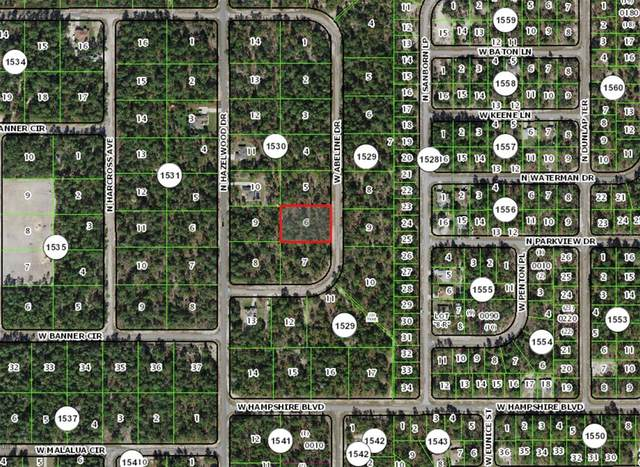 4036 W Abeline Drive, Citrus Springs, FL 34433 (MLS #W7836661) :: Team Bohannon