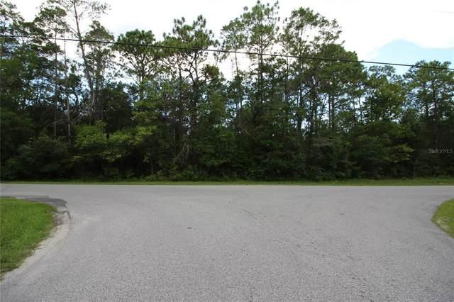 5459 Drew Street, Brooksville, FL 34604 (MLS #W7836721) :: Team Bohannon