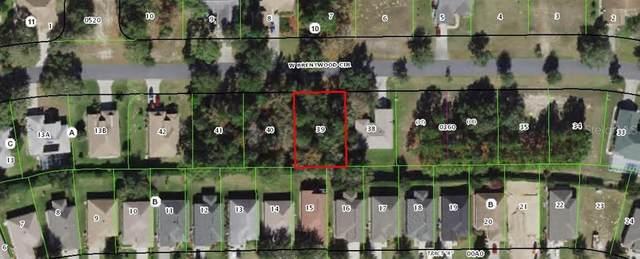 2487 N Brentwood Circle, Lecanto, FL 34461 (MLS #W7836804) :: GO Realty
