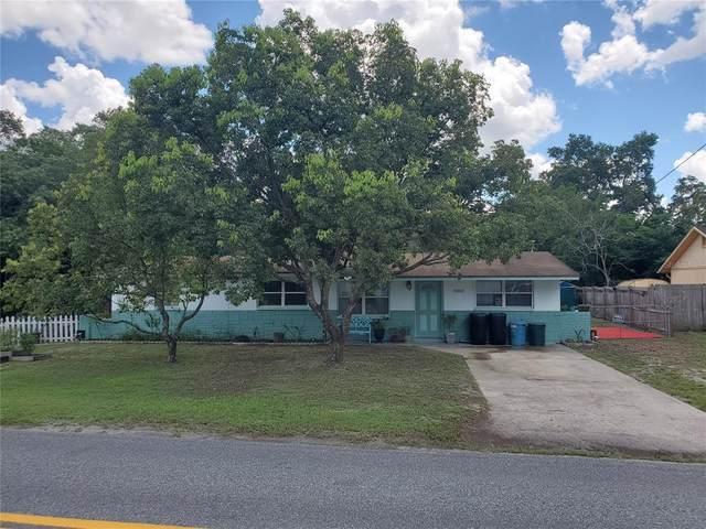 9058 Royal Palm Avenue, New Port Richey, FL 34654 (MLS #W7836865) :: Zarghami Group
