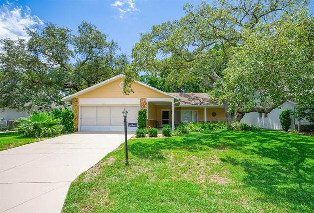 6397 Pine Meadows Drive, Spring Hill, FL 34606 (MLS #W7836906) :: The Curlings Group