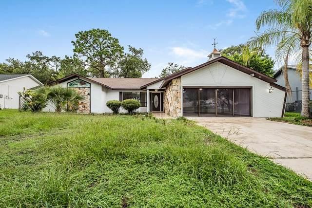 4346 Craigdarragh Avenue, Spring Hill, FL 34606 (MLS #W7836950) :: Everlane Realty