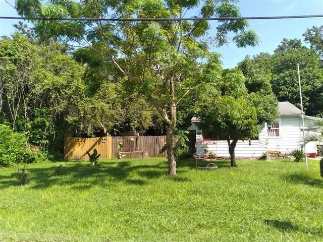 11919 Bethwood Avenue, New Port Richey, FL 34654 (MLS #W7837049) :: Vacasa Real Estate