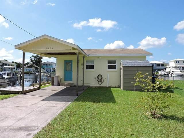 3484 Eagle Nest Drive, Hernando Beach, FL 34607 (MLS #W7837101) :: RE/MAX Elite Realty