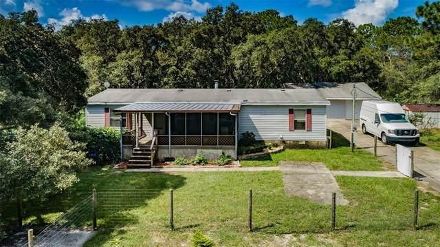 15031 Toni Terrace, Hudson, FL 34669 (MLS #W7837159) :: GO Realty