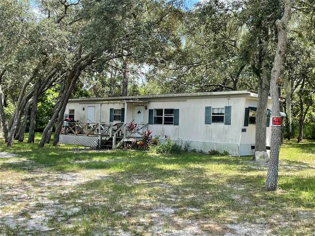 3356 Keye Drive, Spring Hill, FL 34606 (MLS #W7837170) :: Team Turner