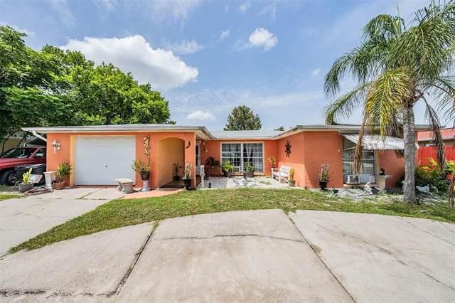 10125 Regency Park Boulevard, Port Richey, FL 34668 (MLS #W7837192) :: Griffin Group