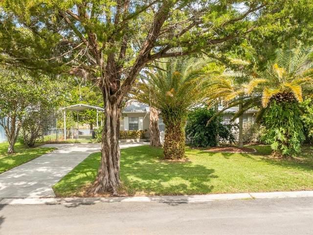 3190 Hibiscus Drive, Hernando Beach, FL 34607 (MLS #W7837271) :: Sarasota Gulf Coast Realtors
