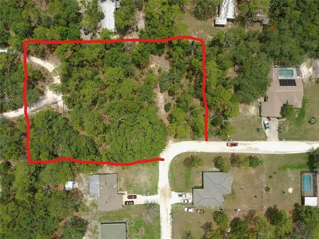 6544 W Mae Lane, Homosassa, FL 34446 (MLS #W7837286) :: Zarghami Group