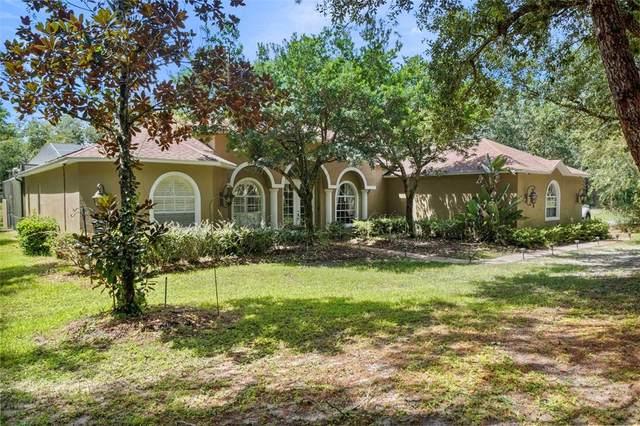 12301 Masked Duck Road, Weeki Wachee, FL 34614 (MLS #W7837363) :: Vacasa Real Estate