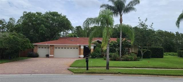 9901 Hermosillo Drive, New Port Richey, FL 34655 (MLS #W7837382) :: Team Turner