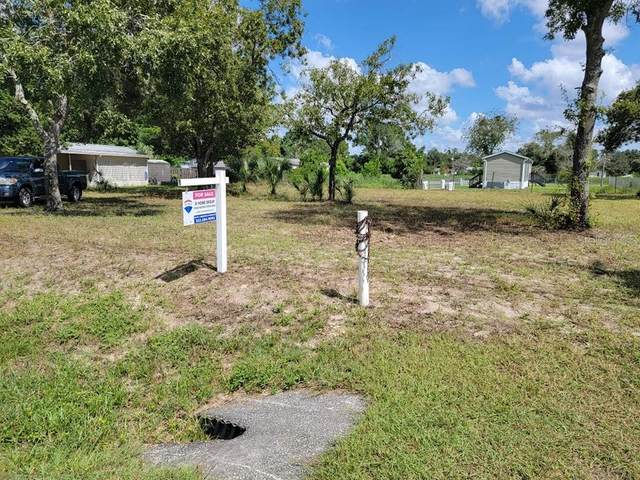 16159 Powell Road, Brooksville, FL 34604 (MLS #W7837387) :: The Hustle and Heart Group