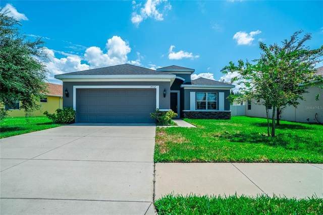 14512 Balloch Drive, Hudson, FL 34667 (MLS #W7837405) :: Global Properties Realty & Investments