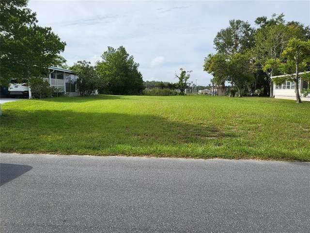 12390 Conde Drive, Brooksville, FL 34613 (MLS #W7837437) :: Vacasa Real Estate