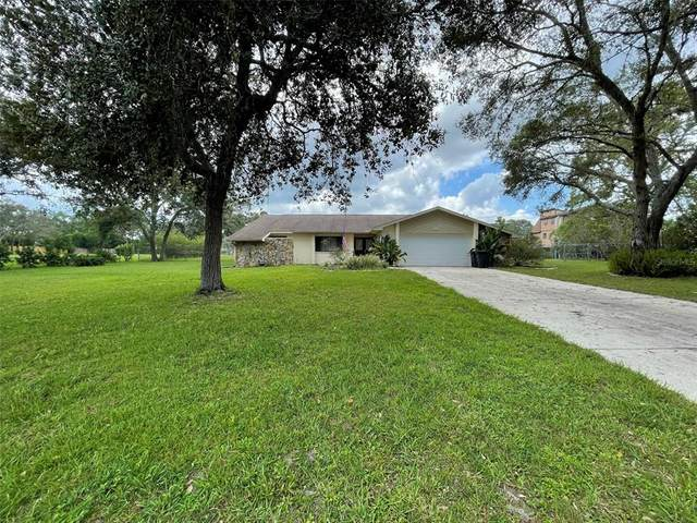 18343 Monteverde Drive, Spring Hill, FL 34610 (MLS #W7837461) :: The Curlings Group