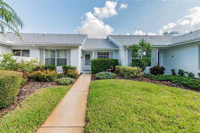 4133 Castlewood Drive, Holiday, FL 34691 (MLS #W7837468) :: Zarghami Group